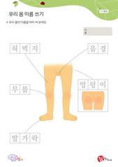 우리 몸 이름쓰기 - 음경, 허벅지, 무릎, 엉덩이, 발가락