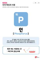 15.인(P)의 특징과 사용